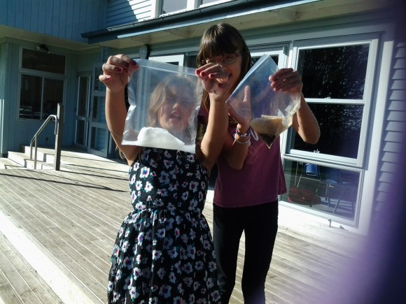 Science experiment: baking soda and vinegar